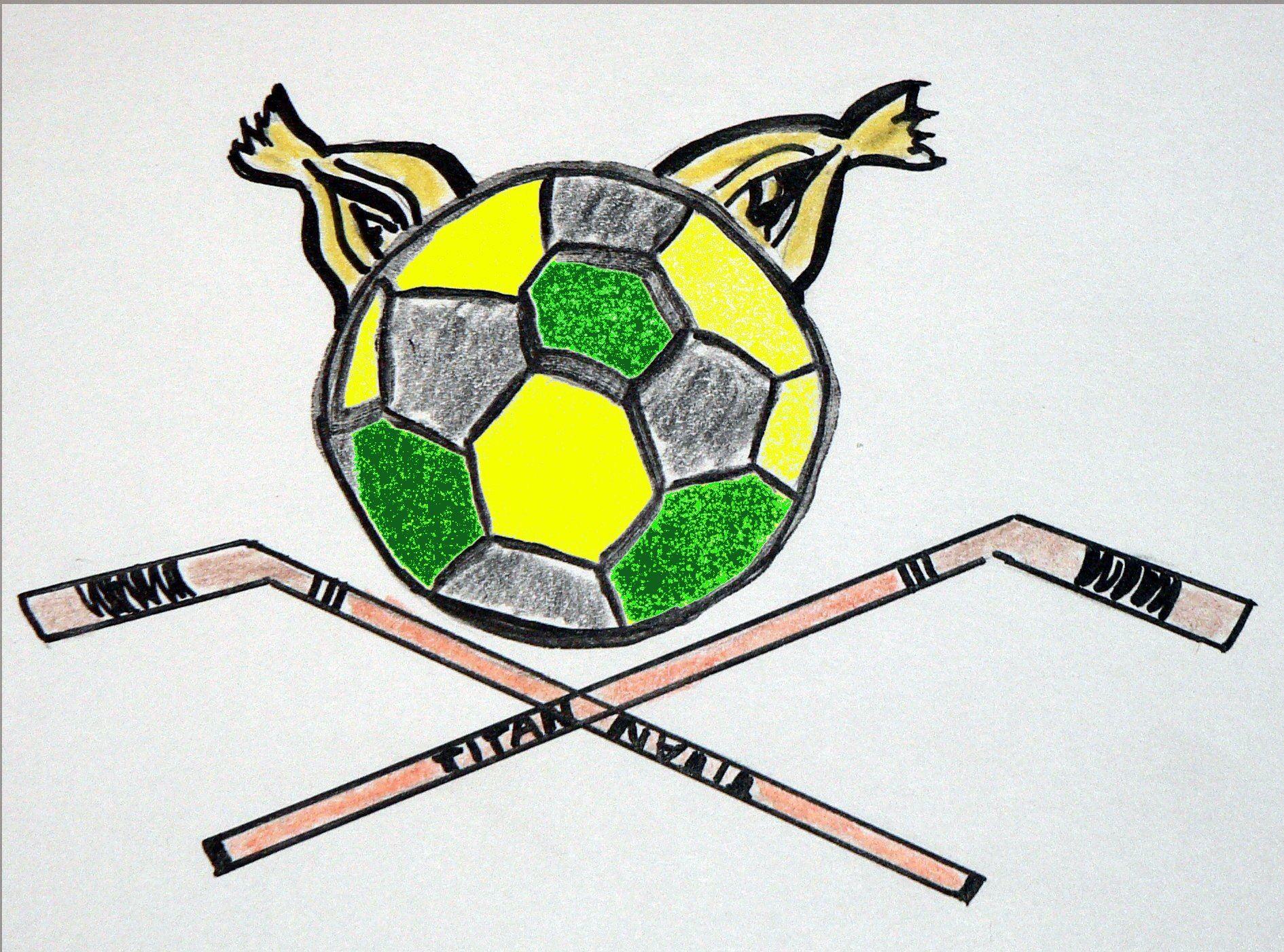 Ilves logo