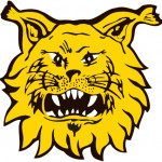 Ilves ry